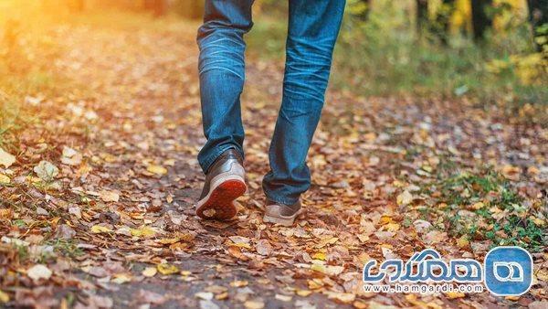 9 دلیل قانع کننده برای آغاز پیاده روی