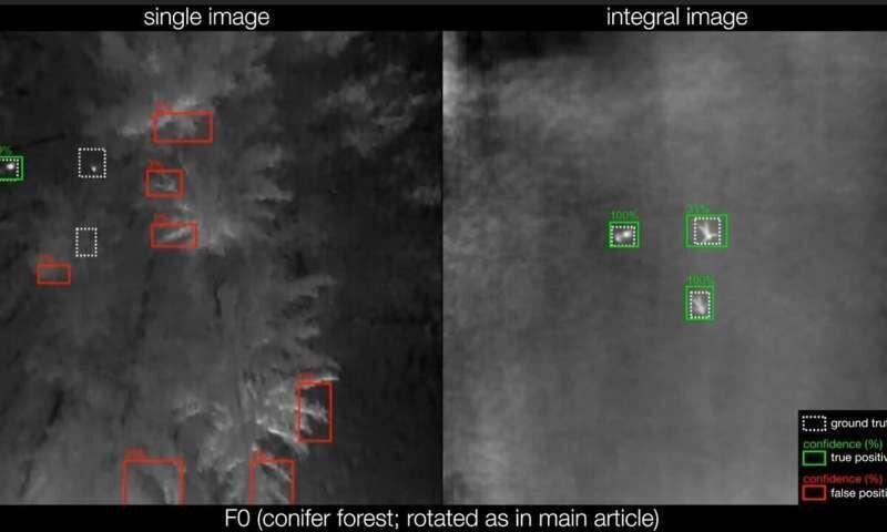 یافتن افراد گم شده در جنگل با هوش مصنوعی