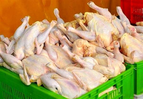 تامین گوشت مرغ مورد احتیاج ماه مبارک رمضان