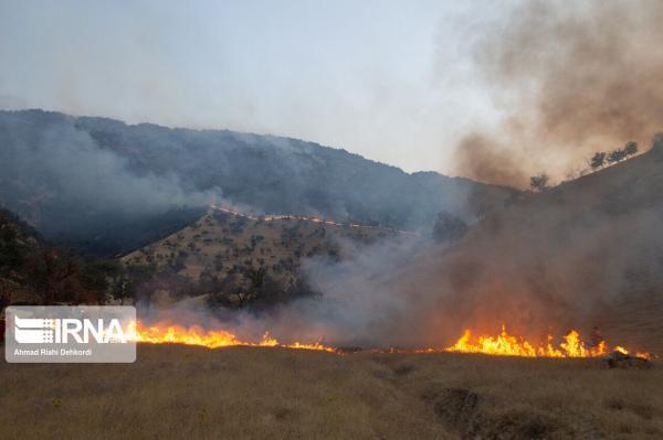 خبرنگاران محیط زیست برای مقابله با آتش سوزی های احتمالی جنگل ها دست به کار شد