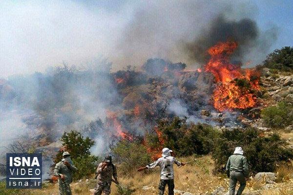 سیزده بدر در خانه بمانیم، در طبیعت آتش روشن نکنید