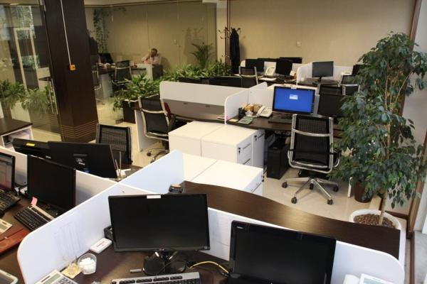 دیوار برای جذب نیروی کار مناسب به کمک کارفرمایان می آید